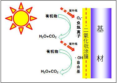 分解性防污实验1-01.jpg