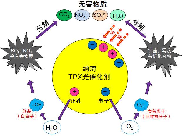 光催化剂反应过程2.jpg
